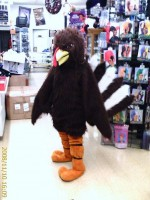 Turkey Mascot (Rental)