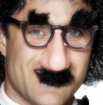 Groucho specs/nose glasses