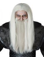 Dark Wizard Wig and Beard