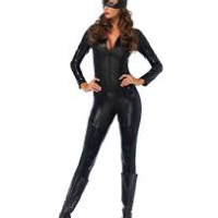 Captivating Crime Fighter or Catsuit