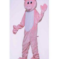 Pig (Rental)