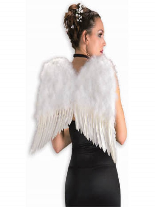 WINGS-ANGEL-53730.jpg