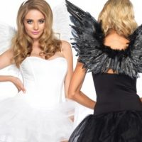 Angel Wing Accessory Kit